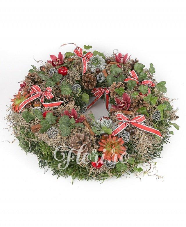 conuri brad, echeveria, orhidee, globuri, scorțișoară, tillandsia