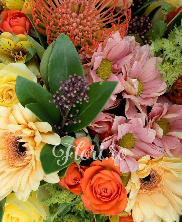 3 trandafiri galbeni, 3 crizanteme crem, 5 alstroemeria galbene, 3 miniroze portocalii, 3 gerbera galbene, 3 leucospermum, 3 schimia, 5 bupleurum, verdeață