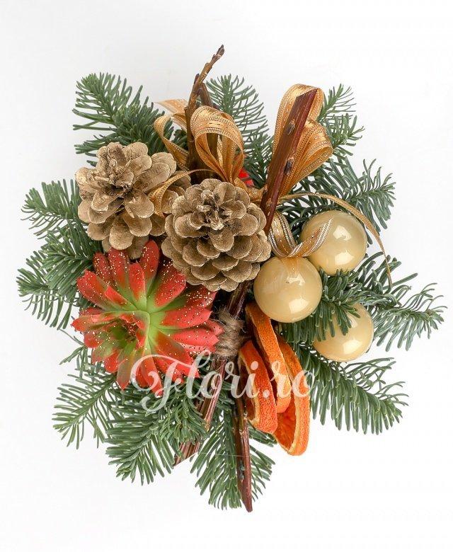 1 echeveria, conuri, globuri, portocalie uscate, brad