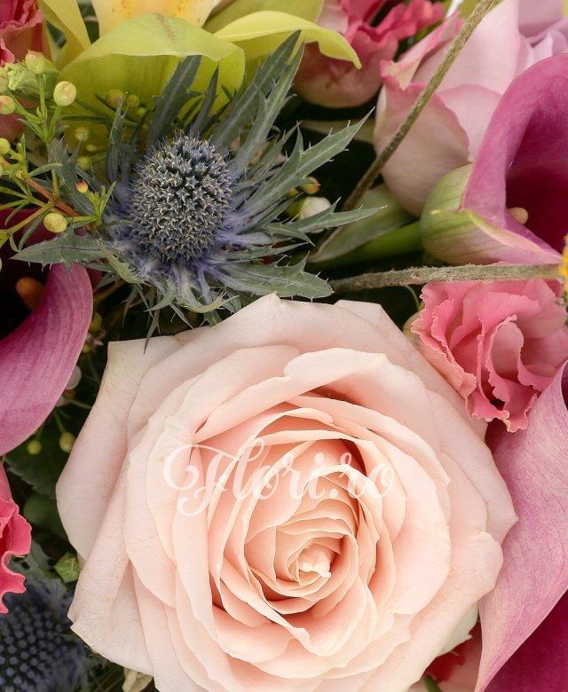 3 cale ciclam, 1 cymbidium verde, 3 lisianthus roz, 3 trandafiri mov, 3 trandafiri banan, 1 eryngium, 3 craspedia, waxflower, pin, salal, aspidistra