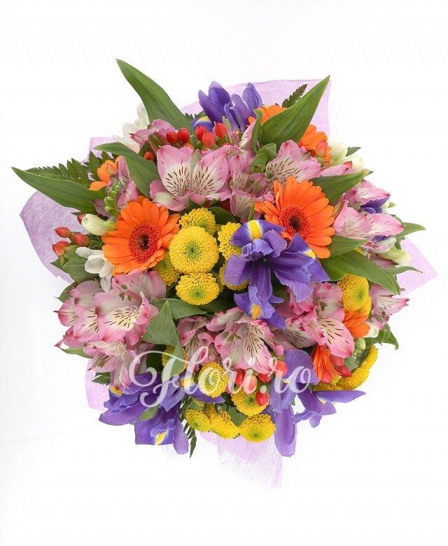 5 gerbera portocalii, 5 alstroemeria roz, 4 santini galben, 5 iris mov, 5 frezii albe, verdeață
