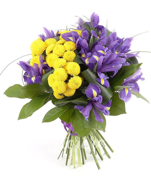 10 iris mov, 5 santini crizantemă galbenă, verdeață