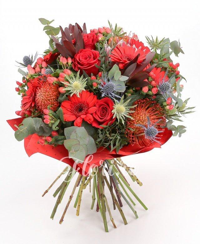 7 trandafiri roșii, 7 gerbera roșii, 3 leucadendron, 5 hypericum roșu, 3 leucospermum, 1 proteea, 4 eryngium, verdeață
