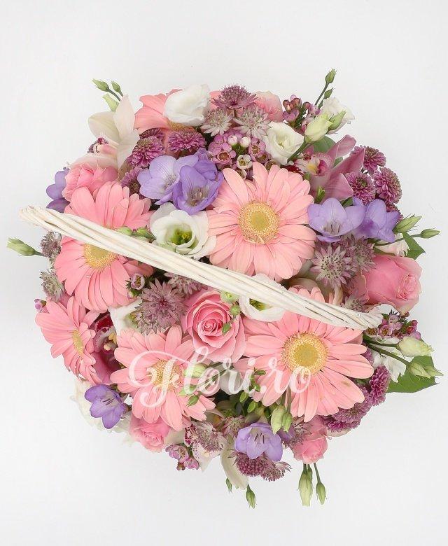 6 gerbera roz, 5 santini roz, 5 trandafiri roz, 4 lisianthus alb, astranția, 5 frezii mov, cymbidium grena, cymbidium alb, waxflower, verdeață