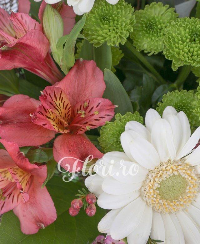 3 gerbera albă, 3 lalele albe, alstroemeria roșie, 3 lisianthus roz, santini verde, waxflower roz, verdeață