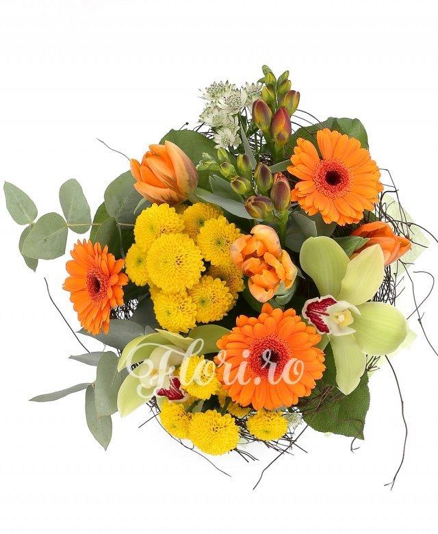 3 gerbera portocalii, 2 santini galbeni, 3 lalele portocalii, 2 frezii portocalii, cymbidium verde, astranția albă, verdeață