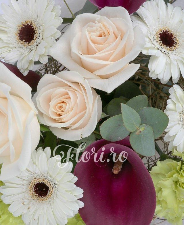 3 trandafiri crem, 3 cale grena, 4 gerbera albe, 3 garoafe verzi, eucalypt
