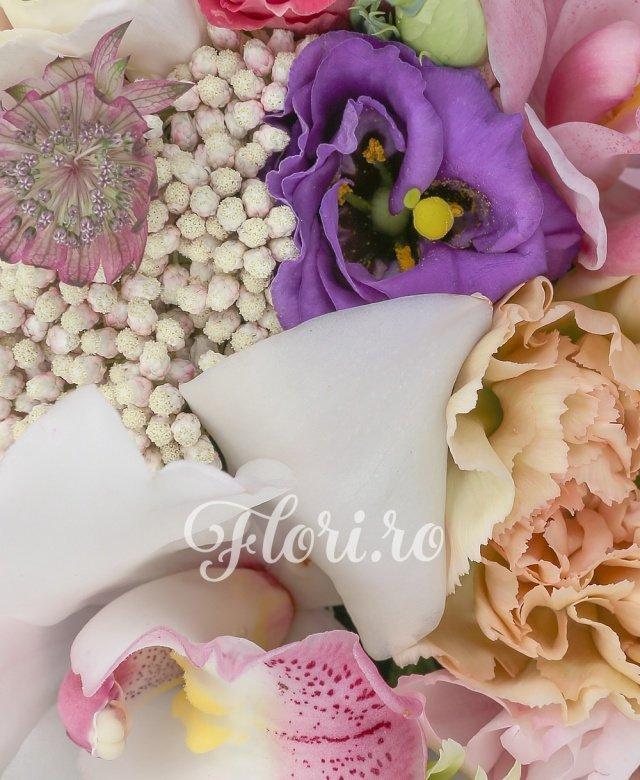 3 garoafe crem, 2 lisianthus roz, 2 miniroze roz, 1 lisianthus mov, 1 lisianthus grena, cymbidium roz, cymbidium alb, 1 crizantema verde, astrantia roz, floare de orez, cutie