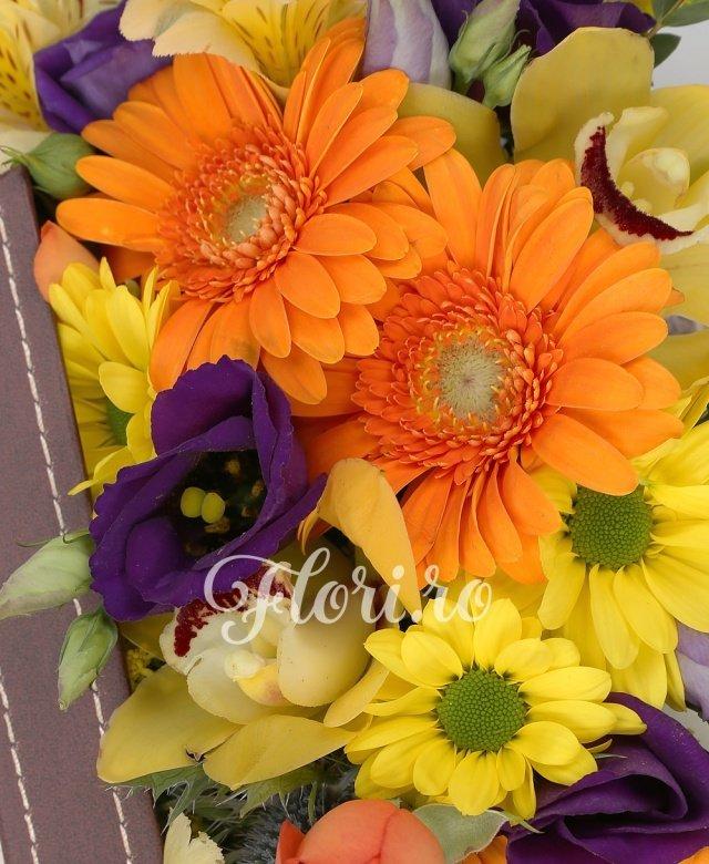 3 gerbera portocalii, 3 lisianthus mov, 1 alstroemeria galbenă, 1 solidago, 1 miniroza portocalie, cymbidium galben, 1 eryngium, verdeață