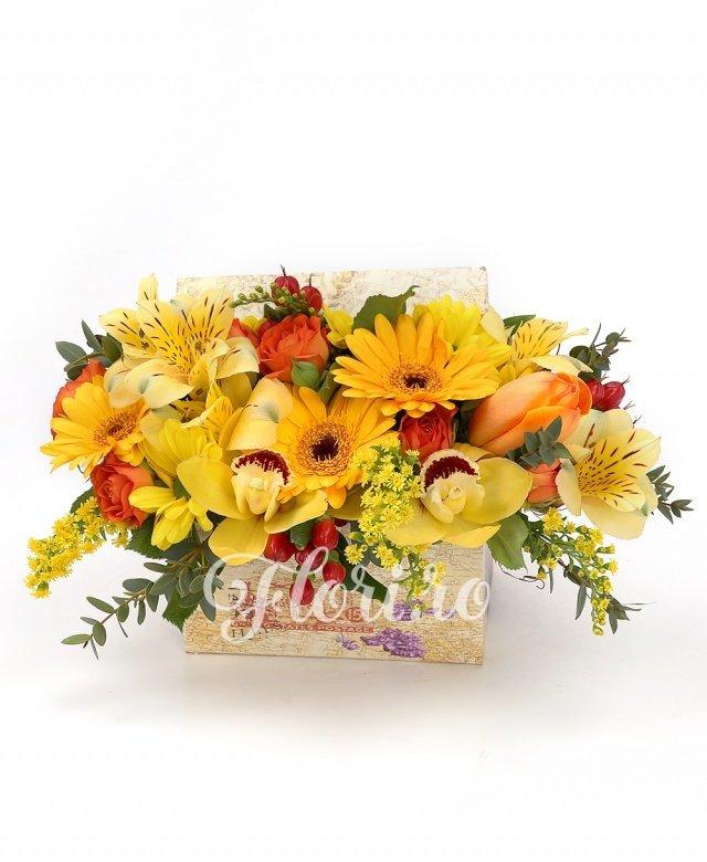 3 gerbera galbenă, 2 miniroze portocalii, 1 crizantemă galbenă, 2 hypericum roșu, 1 alstroemeria galbenă, cymbidium galben, 2 lalele portocalii, solidago, eucalypt, cutie