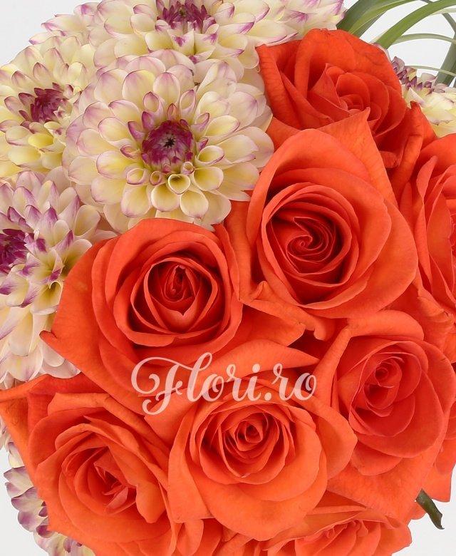 11 trandafiri portocalii, 10 dalii, verdeață