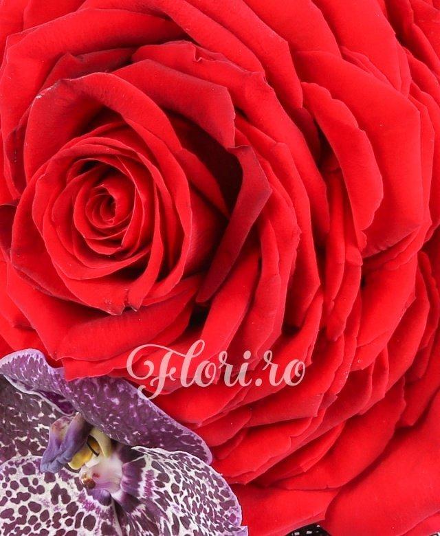 trandafir rosu construit, orhidee vanda, hypericum, perle, cuib