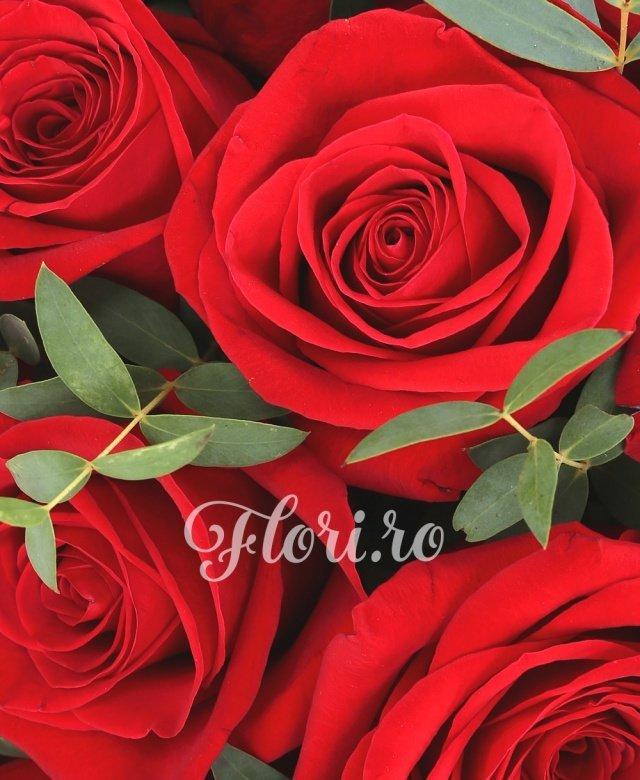 29 trandafiri roșii, verdeață