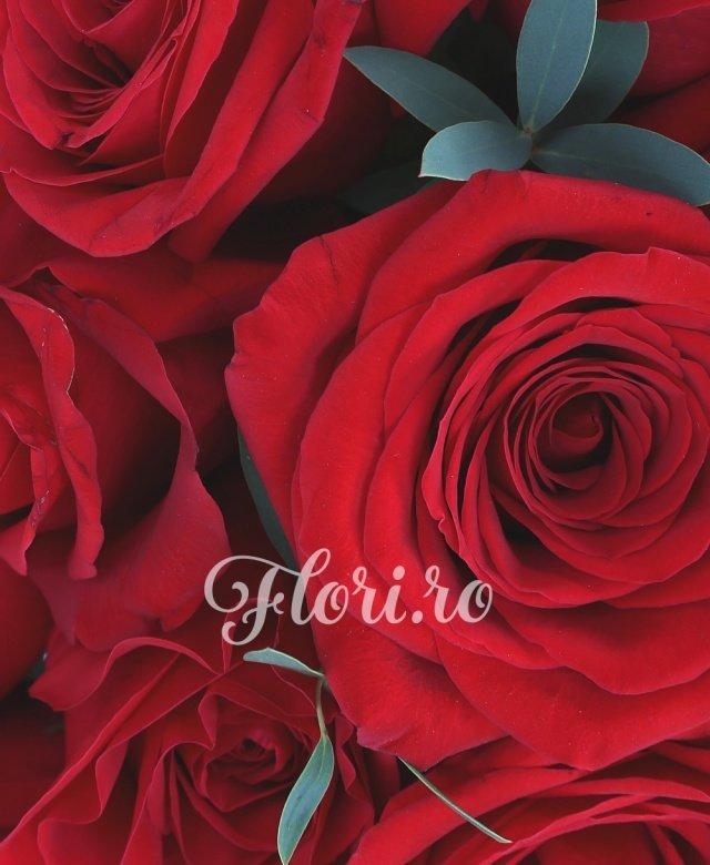 35 trandafiri roșii, verdeață