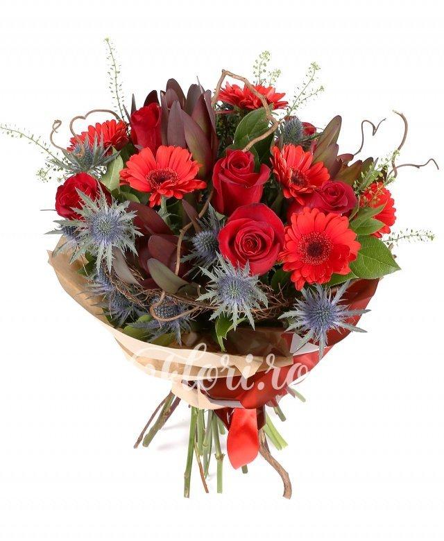 6 gerbera roșii, 4 leucadendron, 7 trandafiri roșii, 5 eryngium, verdeață