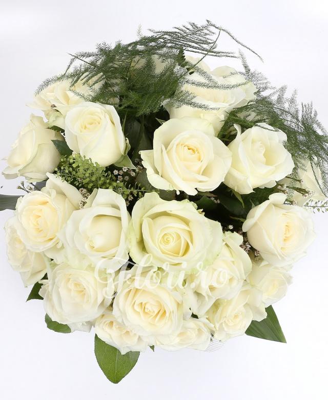 31 trandafiri albi, verdeață