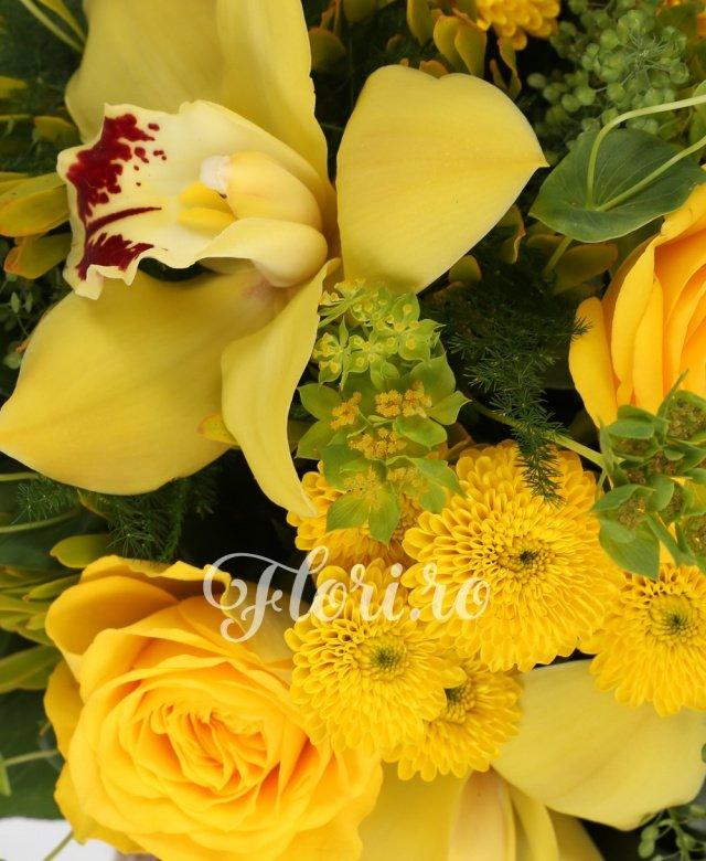 3 santini galben, 3 trandafiri galbeni, cymbidium, verdeață