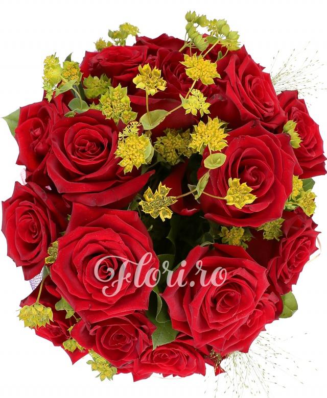 25 trandafiri roșii, 3 bupleurum, 3 panicum, verdeață