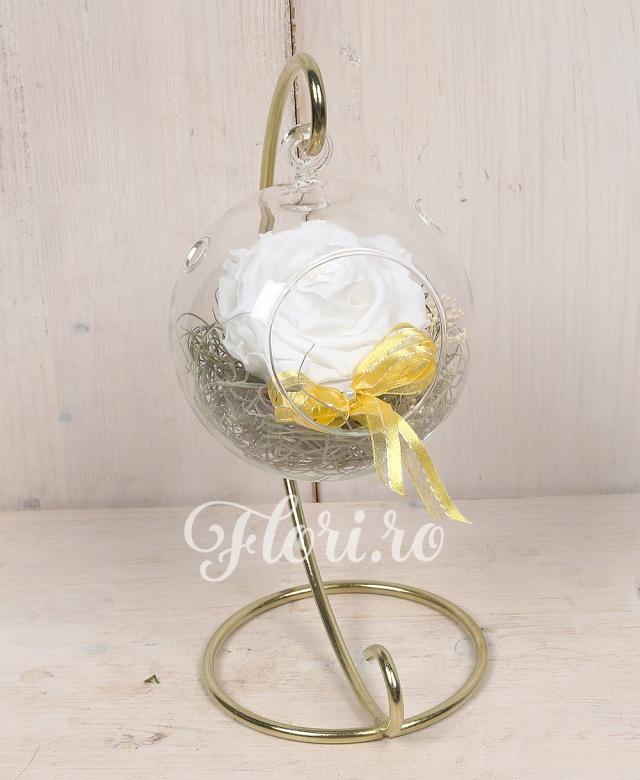 1 trandafir criogenat alb in glob de sticla