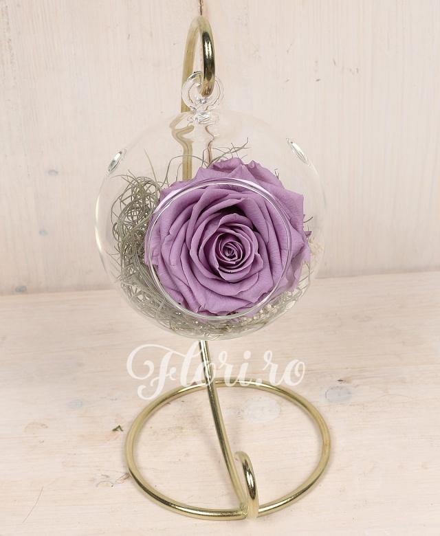 1 trandafir criogenat mov in glob de sticla