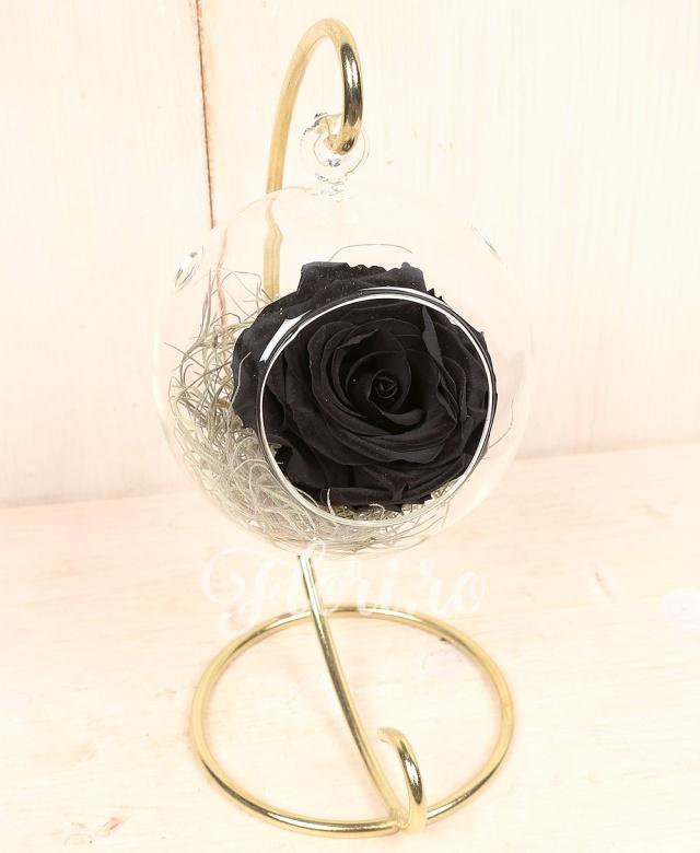 1 trandafir criogenat negru in glob de sticla