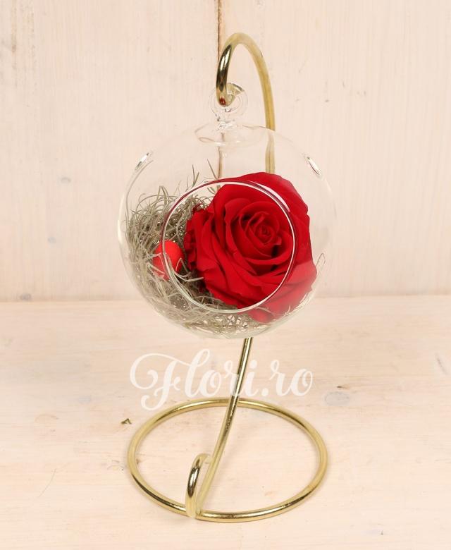1 trandafir criogenat rosu in glob de sticla