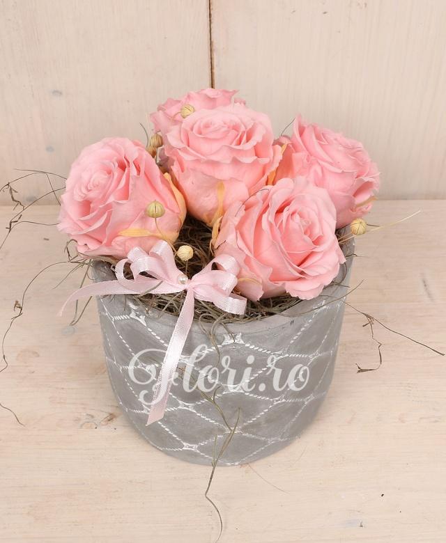 5 trandafiri criogenați roz în bol
