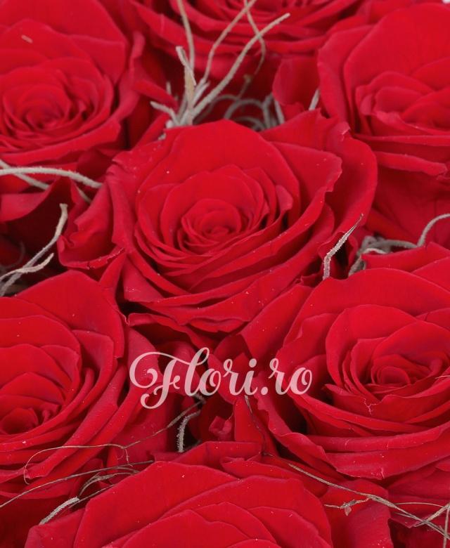 9 trandafiri criogenati roșii în cutie