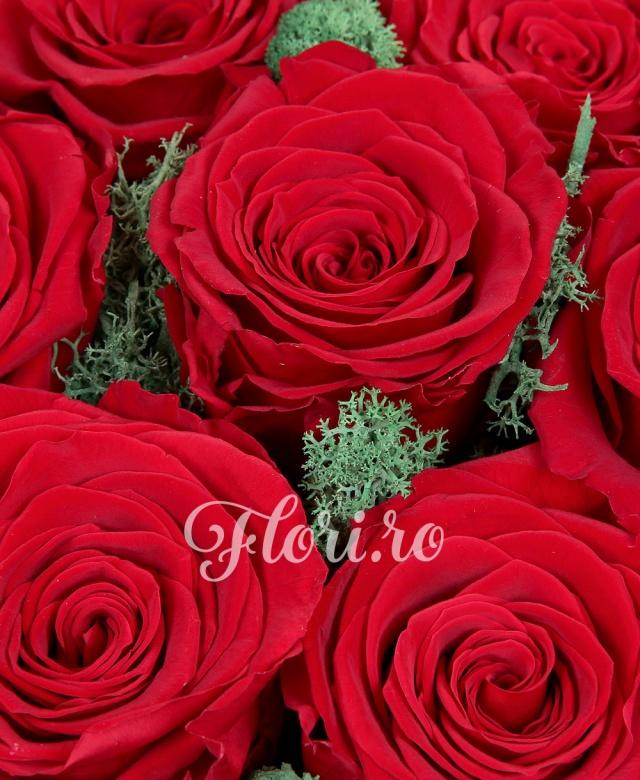 7 trandafiri roșii naturali criogenați, cutie rotundă