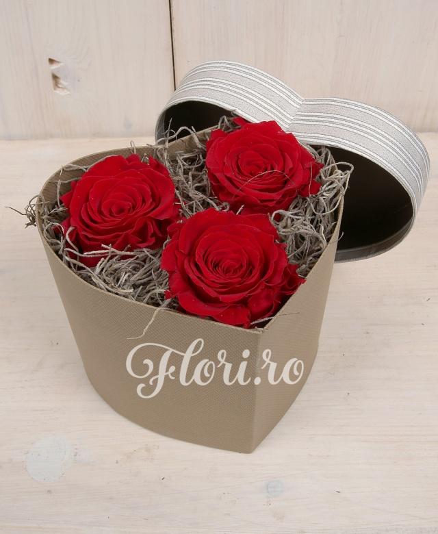 3 trandafiri naturali criogenați, cutie în formă de inimă