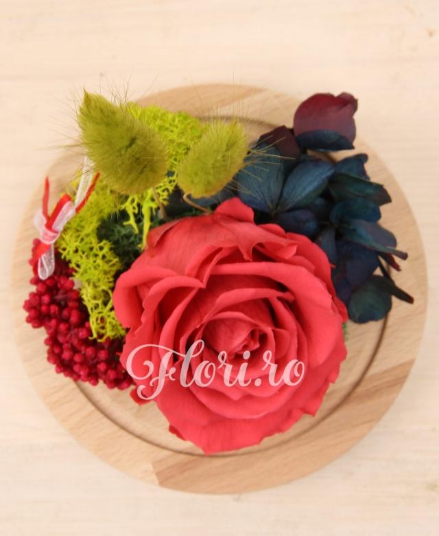1 trandafir criogenat roz intens, hortensia criogenata, muschi criogenat, cupolă sticlă pe suport lemn