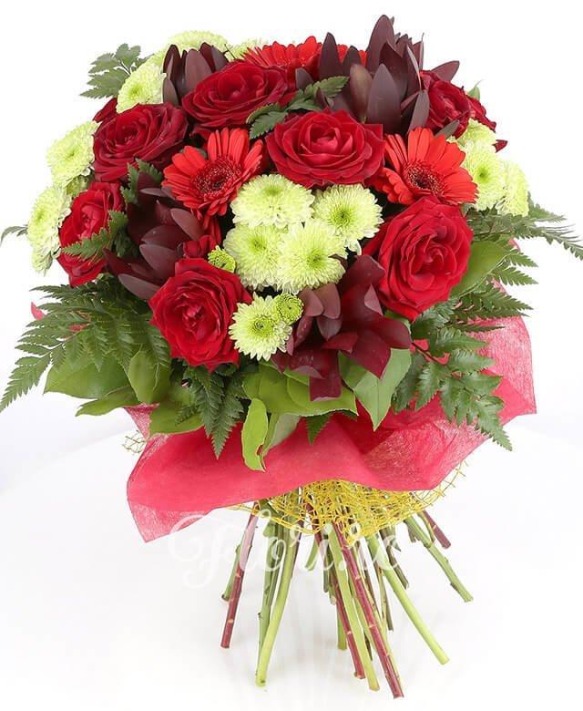 7 trandafiri roșii, 5 santini alb, 5 leucadendron, 4 gerbera roșie, verdeață