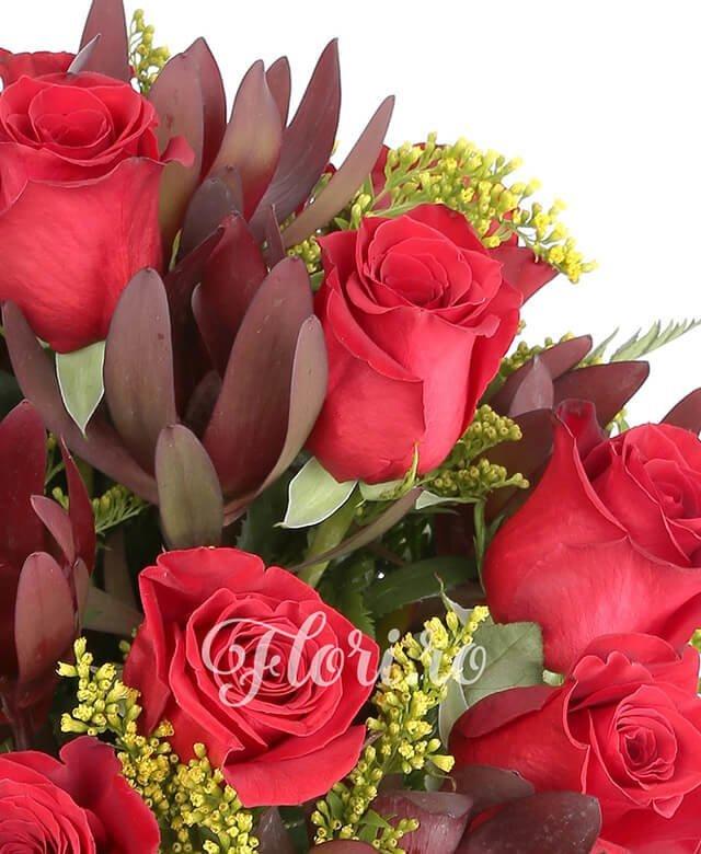 15 trandafiri rosii, 10 leucadendron, solidago