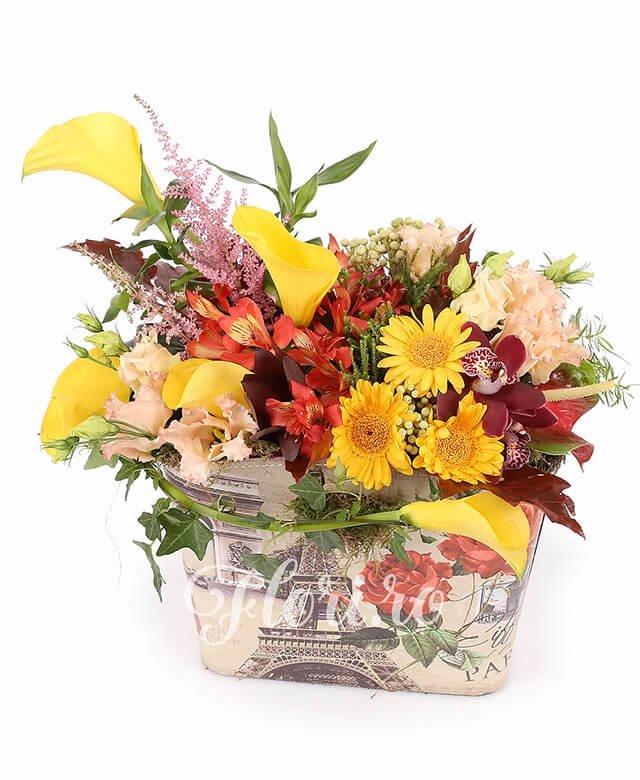gentuță, 5 cale galbene, 3 gerbera galbenă, 3 alstroemeria portocalie, 3 lisianthus roz, cupe cymbidium grena, 3 anthurium, 2 leucadendron, 2 bambus, 3 brunia, 3 astilbe roz, verdeață