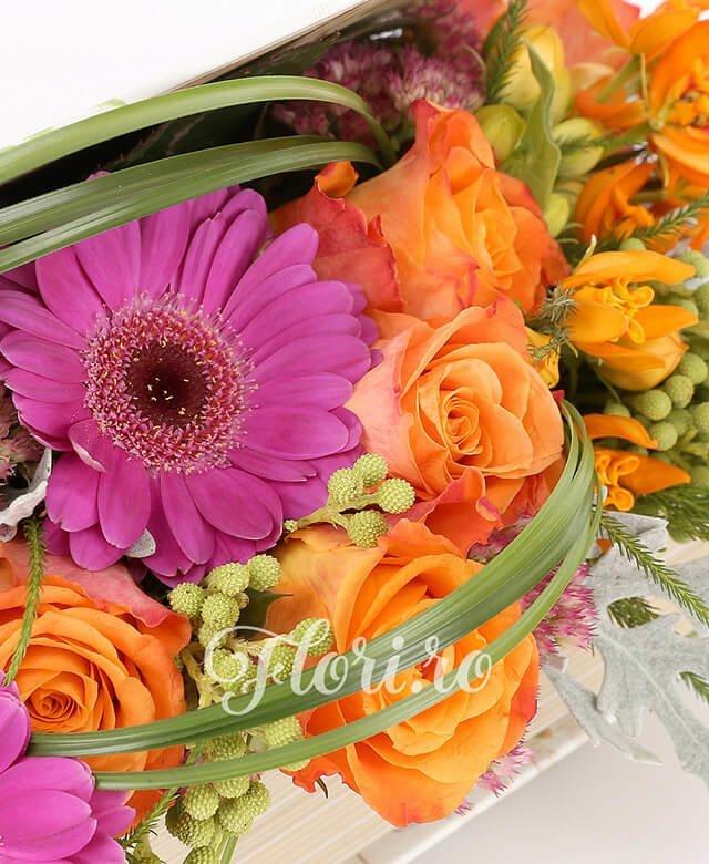 carte, 6 trandafiri portocalii, 3 gerbera roz, brunia, bupleurum, kalanchoe, asclepias portocalii, verdeață