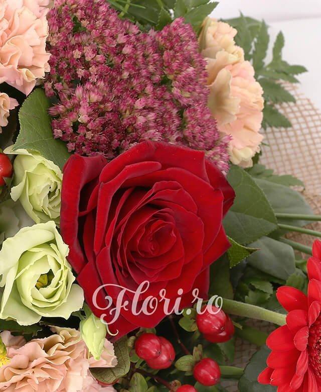 3 trandafiri rosii, 3 gerbera rosie, 3 lisianthus alb, 3 garoafe banan, 2 hypericum rosu, 2 solidago, 1 kalanchoe, asparagus, salal, philodendron, corilius