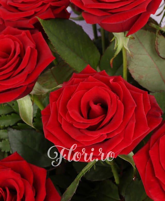 21 trandafiri rosii
