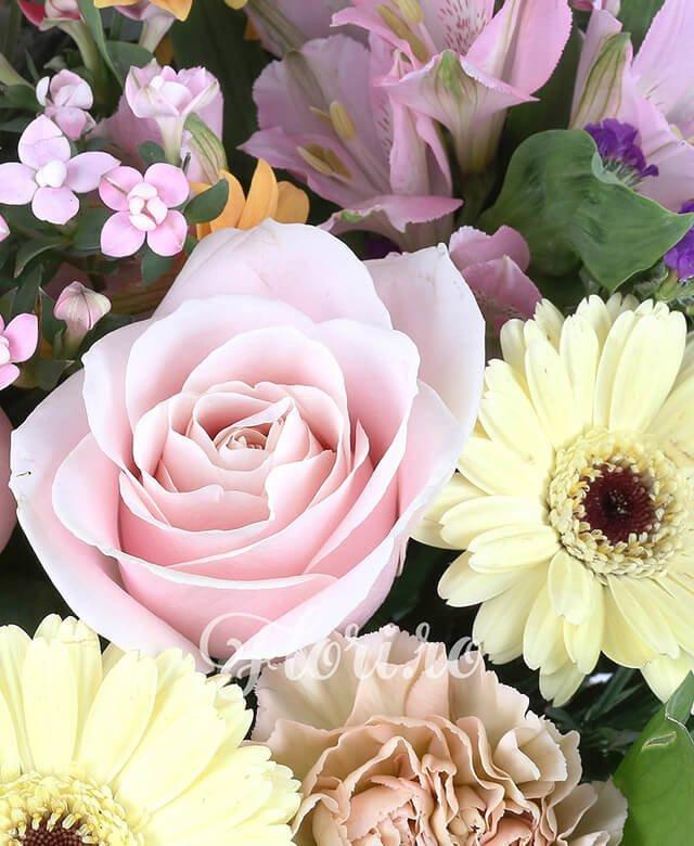 5 garoafe cappucino, 5 gerbera crem, 5 trandafiri roz pal, 3 miniroze portocalii, 1 crizantema portocalie, 5 lishiantus alb, 3 bovardia roz, limonium, ruscus, olanda, 3 alstroemeria roz, eucalypt