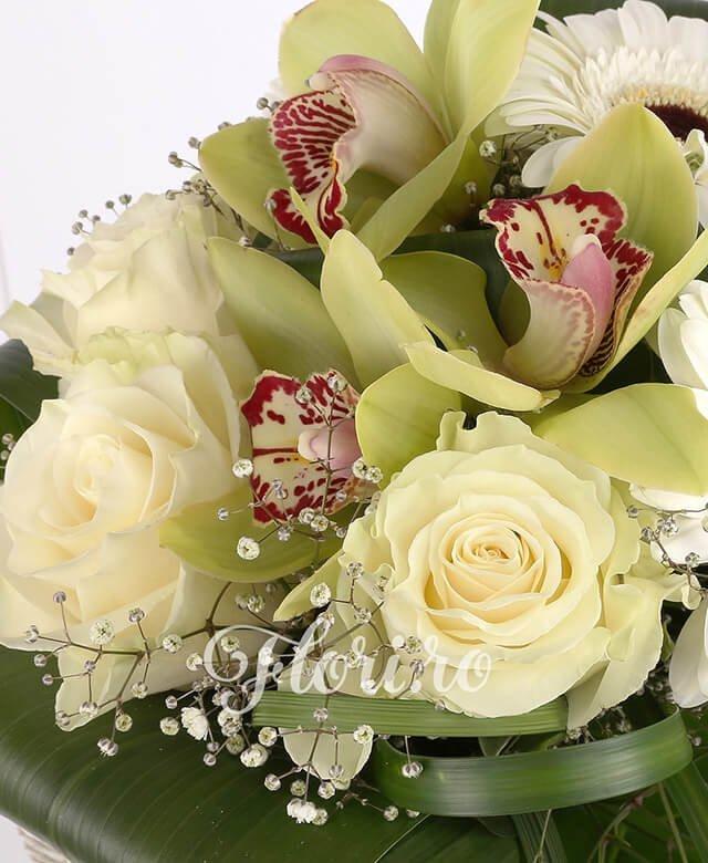 3 trandafiri albi, 3 gerbera albă, 1 cymbidium verde, gypsophila, verdeață