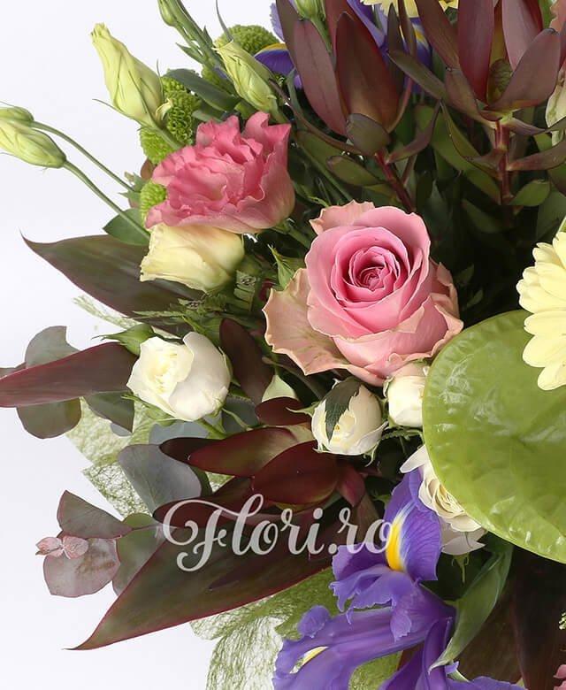 3 anthurium verde, 5 iris mov, 3 trandafiri roz, 3 lisianthus roz, 5 lisianthus alb, 3 fire leucadendron, 3 fire santini verde, 3 fire miniroza alba, 3 fire gerbera crem, eucalypt, 3 fire trahelium alb